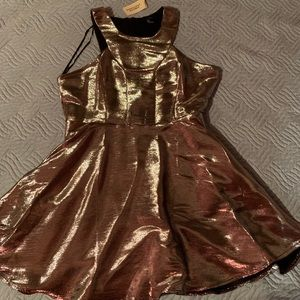 Dresses & Skirts - Forever 21 pink/silver metallic dress